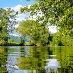 Case Study: Data visualisation for Bristol Avon Rivers Trust (BART)