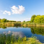 The big water quality issue in our rivers and why it matters